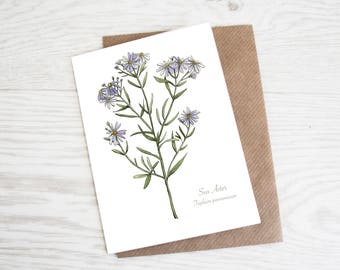 Sea Aster, A6 Botanical Wildflower Greeting Card