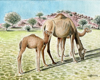 "Reproduction of my original watercolor ""Camels family"""