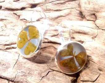 Pressed Clover Dangle Silver Earrings / Preserved Floral Jewelry / Botanical Gift / Handmade