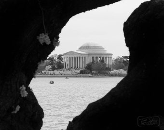 Stolen View of the Jefferson Memorial