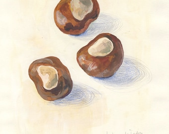 Conkers #5. ORIGINAL chestnuts gouache painting. Autumn chestnuts, still life drawing. Botanical art by Catalina S.A