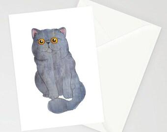 Blue exotic shorthair A6 greeting card