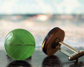 green cufflinks , green leaf cufflinks , wildlife cufflinks , soft green cufflinks , wooden cufflinks , glass cufflink