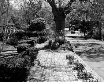 Black and White Photo Brick Pathway, Office Wall Decor, Urban Photo