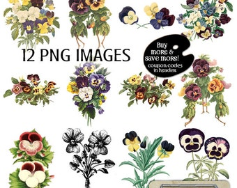 Clipart PANSY - Vintage Flower Clipart - Pansies - Digital Scrapbooking Pansy - Pansy Digital Clip Art Set - Instant Download - Pansy PNG
