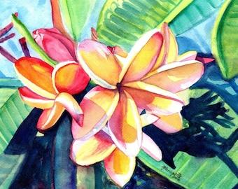 kauai plumeria print 8x10 from hawaii tropical flowers kauai fine art prints frangipani art plumerias kauaiartist marionette hawaiian flower