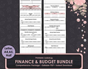Finance & Budget Bundle,Finance Planner,Budget Planner,Finance Journal,Budget Journal,Finance Printable,Budget Printable,Finance Tracker