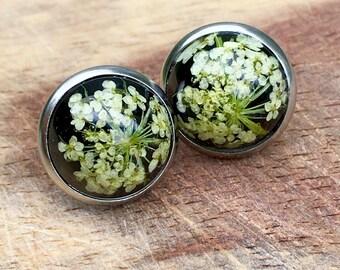 Real flower earrings, dried flower earrings, black background, resin earrings, queen anne's lace, stud earrings using real plants