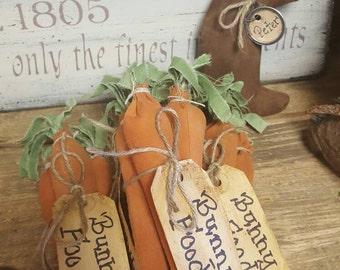 Bunny food Carrots