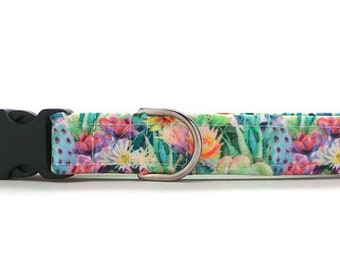 Blooming Cactus CANVAS Dog Collar (Martingale, Buckle or Tag)