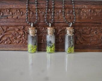 Moss Jar Necklace Style 3