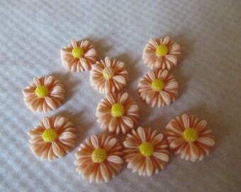 CAMEES MARGUERITTES  SAUMON lot de 10 camées marguerites 1.5 cm  fleurs en résine couleur saumon coeur jaune a coller sur tous