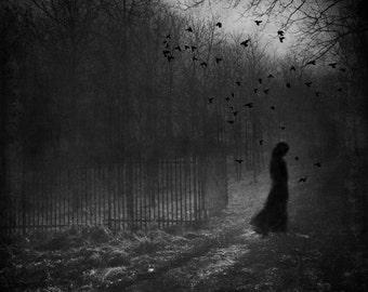 surreal haunting portrait, dreamy woman photo, trees forest nature portrait photo, path, home decor fine art, girl gothic magic creepy birds