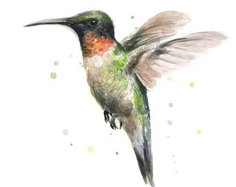 Hummingbird Watercolor Art Print Ruby-Throated Hummingbird Painting, Hummingbird Art, Hummingbird Print, Animal Painting, Illustration