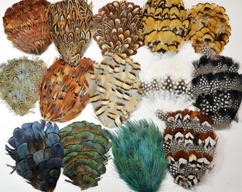 Feather Pads, millinery supplies, pheasant heart, almond, reeve, natural, heart, partridge, guinea, goose (Lot of 6)