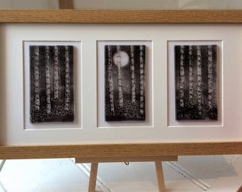 Moonlit Silver Birch Tree Forest -Triptych Picture