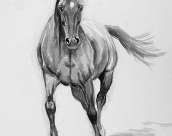 Beautiful equine art horse art LE wall art horse gift horse lover gift art print 'Adelie' from an original ink study drawing sketch
