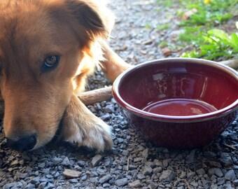 Red Dog Bowl