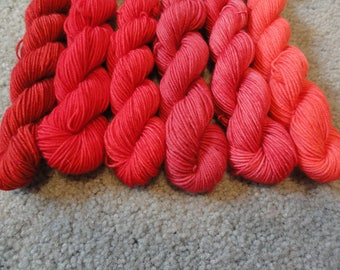 Raging Reds.  Hand Dyed Mini Skeins