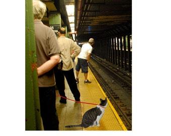 Cat Art, New York City Print, NYC Subway, Giclee Art Print, Whimsical Art, Cat Wall Art, Cat Lover Gifts, Deborah Julian