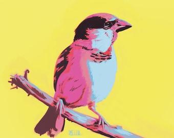 Pop Art Sparrow Print