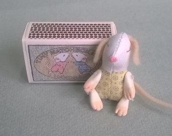 Tiny baby mouse in a box