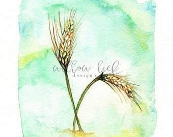 Field of Wheat, Gold Wheat, wall art, Watercolor Print