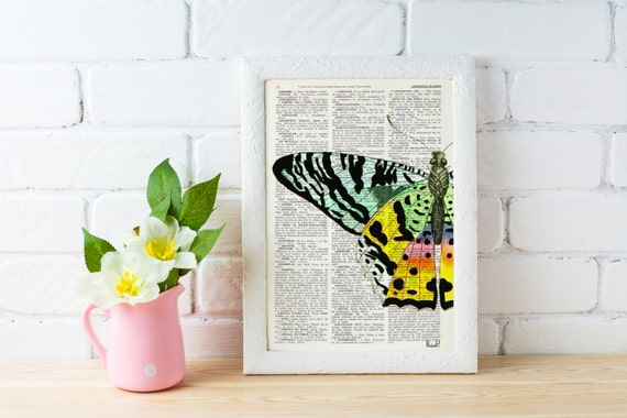 Butterfly detail Book print art - Hand painted Butterfly - Upcycled book page Art Dictionary book print BFL102b