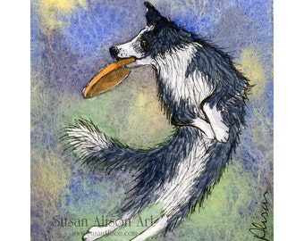 Border Collie dog 5x7 8x10 11x14 art print sheepdog playing game jumping for frisbee snatched from sky frm Susan Alison watercolour painting