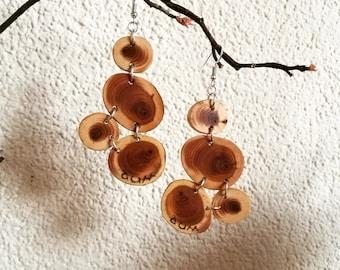 Juniper wood earrings *