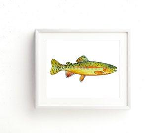 Golden Trout Fine Art Print
