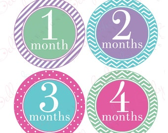 Girl Monthly Baby Stickers, 1 to 12 Months, Monthly Bodysuit Stickers, Baby Age Stickers, Trendy Set 2  (053-2)