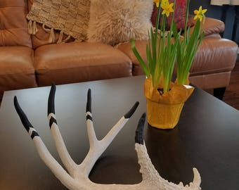 Oh Deer, a Chevron Painted Antler