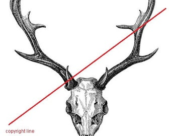 Deer skull - temporary tattoo