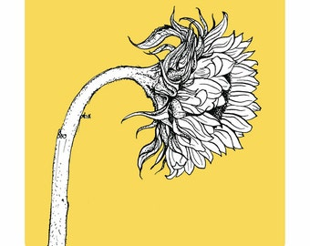 Yellow sunflower print - Archival quality limited edition flower print