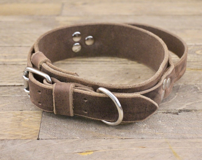 Large collar with handle grip, Leather collar with built in handle, 1 3/4'' Wide, Heavy duty dog collar with handle, Silver hardware