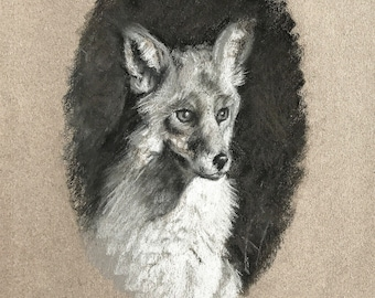 Original Charcoal Drawing of a Fox Wildlife Art