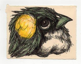 Bird Drawing #8