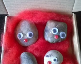"Pet Rock ""PEEBLES"""