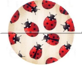 2 cabochons 20mm glass, lucky Ladybug