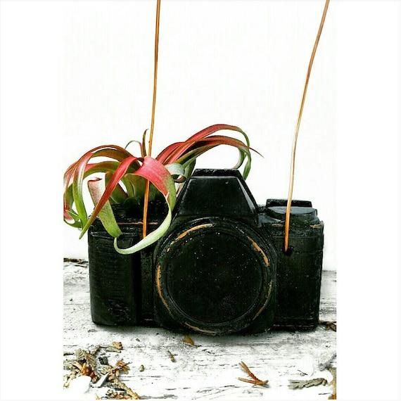 Concrete Camera/Camera Lover/Photographer Gift/Air Plant holder/Camera Decor/Concrete Decor/Photographer Lover/Industrial/photographer gift