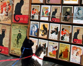 Black Cat Lover Gift, Cat Art Print, Paris Wall Art, Cat Decor, Housewarming Gift, Le Chat Noir, Deborah Julian