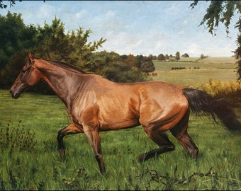 Custom Horse painting on canvas, Equine Portrait, Equine Painting, Horse Portrait - oil painting ***Lowest price is 50% DEPOSIT price***