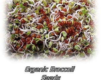 Organic Sprouting Broccoli Sprouts Seeds - 1 oz Amazing Sprouts Non GMO!