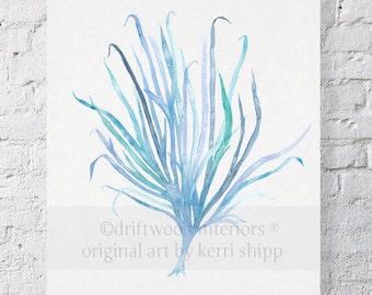 Seaweed Wall Art Print in Aqua - Blue Coral Art - Blue Seaweed Print - Sea Life Art Print - Coral Art Print - Seaweed VII in Aqua 11x14