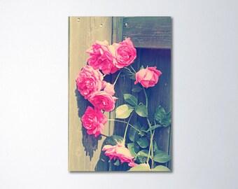 Pink Floral Art, Large Wall Art, Shabby Chic Art, Vertical Art, Large Canvas Art, Pink Roses, Romantic Art, Pink Art, Fine Art Photogaphy