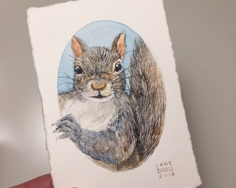 Nosy Squirrel Tiny Original Watercolor Painting Free Shipping