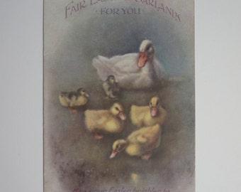 Vintage Easter Ducks Postcard
