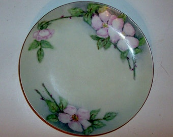 Hand Painted Wild Rose Plate