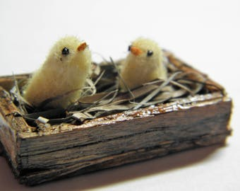Miniature baby chicks (RESERVED)